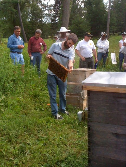 Dean Stiglitz, co-author of The Complete Idiot's Guide to Beekeeping, commercial treatment-free beekeeper, and a most-natural teacher
