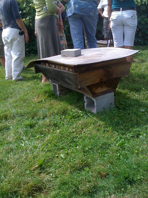 One of Sam Comfort's home-built top-bar hives