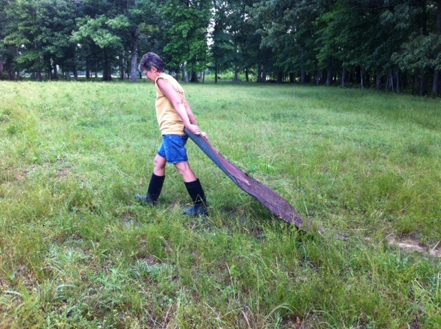 Deb (in muck boots) hauls a sheet of barn roofing through the field