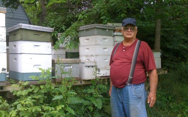 Marion Ackerman and several of his hives