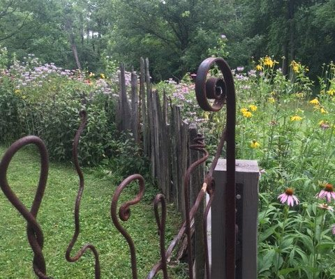 Wildflowers and a wild fence